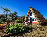 'personal tours in ' + Madeira Islands