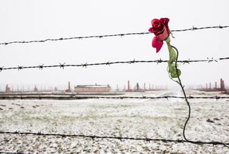 Auschwitz-Birkenau Memorial and Museum- SPANISH Guided Tour