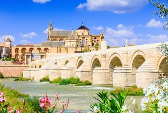 Cordoba Walking Private tour + Mosque-Cathedral