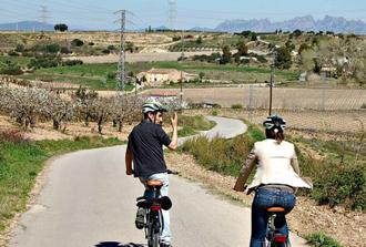 Electric bike tour in the Penedès region and lunch at a winery