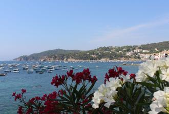 Discover the sights of Costa Brava on a half-day tour